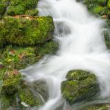 Quelle mit bemoosten Steinen