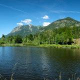Moorweiher bei Oberstdorf Allgäu